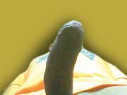 ikaro80