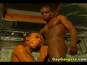 Horny black men cock sucking