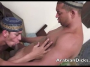 Arabian Cock Monsters