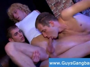 Disco party with wild guys and crazy cocks