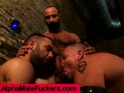Hairy Alpha Bears Eat Ass & Fuck in Alley