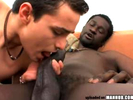 A big black dick gay..