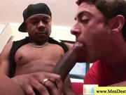 White guy is fascinated with big black cock